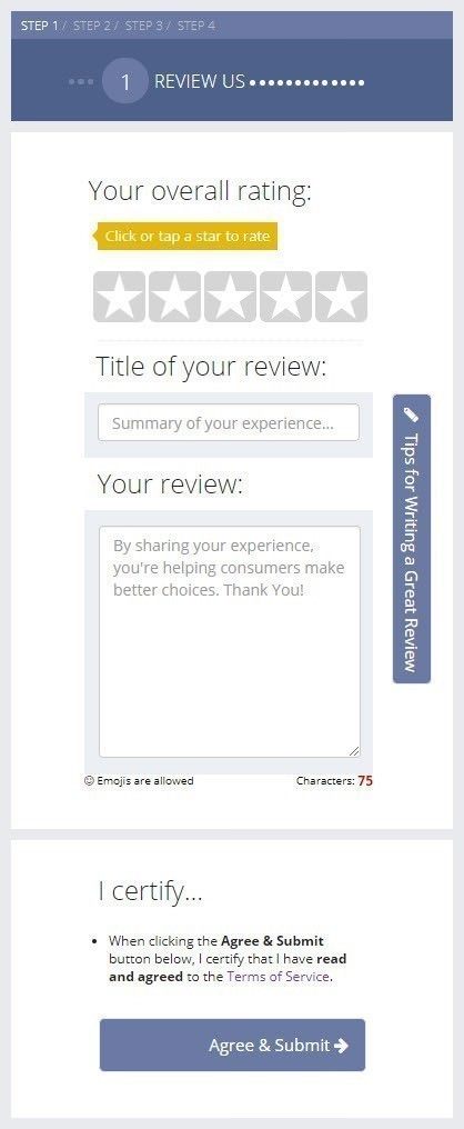 An Online Review Form
